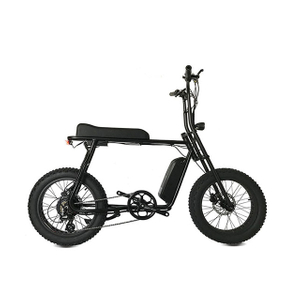 Mario Retro-100 250w-750w rear hub motor electric fat bike